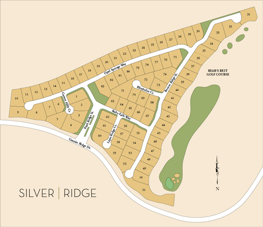 Scheduled for full build out in the first quarter of 2020, Silver Ridge at The Ridges will contain 83 luxurious new homes.